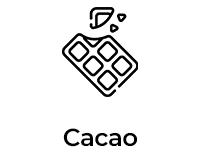 ingrediente-cacao